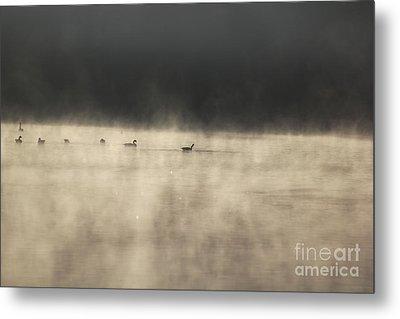 Sunrise Geese Metal Print by Melissa Petrey