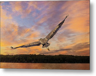 Sunrise Heron Metal Print by Tracy Munson