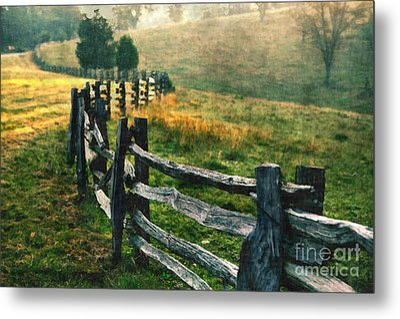 Sunrise Meadow - Blue Ridge Parkway II Metal Print by Dan Carmichael