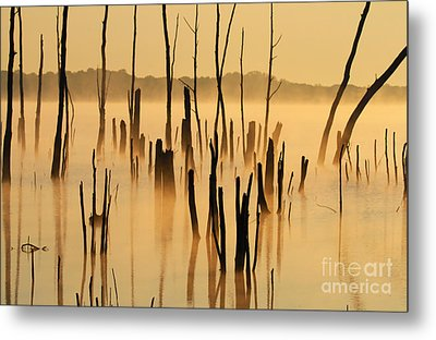 Sunrise Mist Metal Print