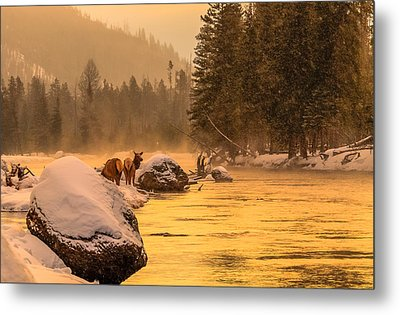 Metal Print featuring the photograph Sunrise On Madison River by Yeates Photography