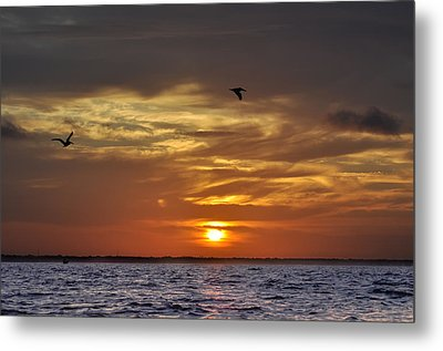 Sunrise On Tampa Bay Metal Print by Bill Cannon