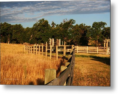 Sunrise On The Fence Metal Print by Michele Richter