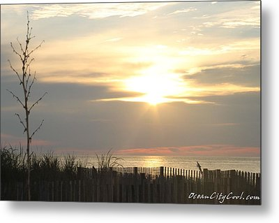 Metal Print featuring the photograph Sunrise Over Beach Dune by Robert Banach
