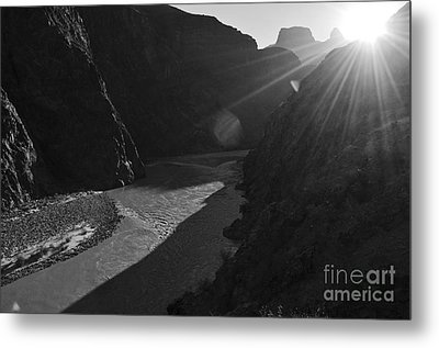 Sunrise Over The Colorado River Along Bright Angel Trail Grand Canyon National Park Black And White Metal Print by Shawn O'Brien