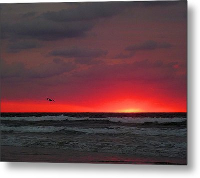 Sunrise Pink Metal Print by JC Findley