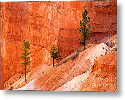 Sunrise Point Bryce Canyon National Park Metal Print