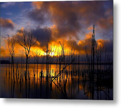 Sunrise Metal Print by Raymond Salani III