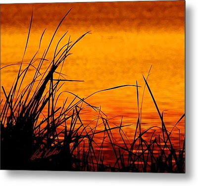 Metal Print featuring the photograph Sunrise Reflected On The Pond by Bill Kesler