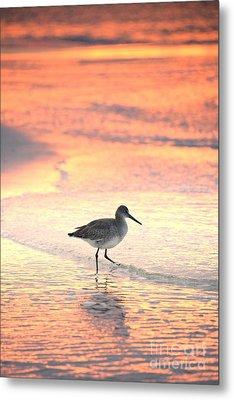 Sunrise Shorebird Metal Print by Henry Kowalski