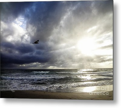 Sunrise South Florida Treasure Coast Metal Print by Ginette Callaway