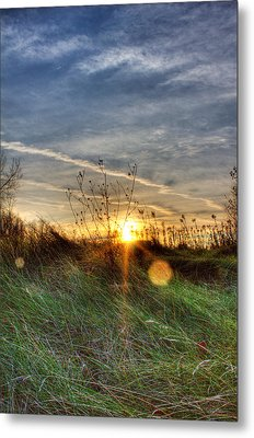 Sunrise Through Grass Metal Print by Tim Buisman