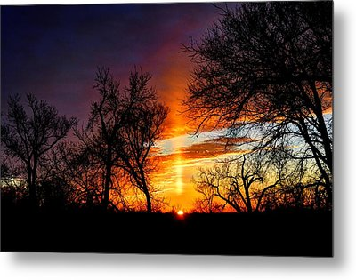 Sunrise Through The Cottonwoods Metal Print by Jean Hutchison