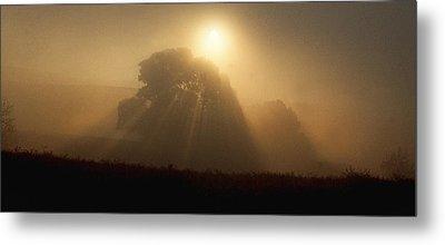 Sunrise Through The Fog Metal Print