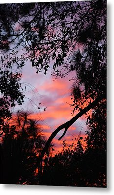 Sunset 16 Metal Print