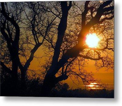 Sunset Above Rice Fields Metal Print by Debra Madonna