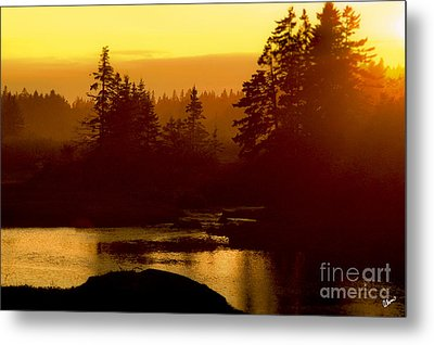 Sunset Metal Print by Alana Ranney