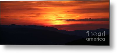Sunset Metal Print by Amanda Mohler