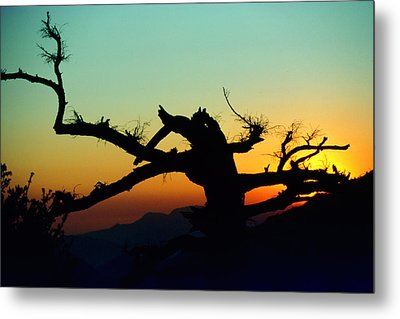 Sunset Angeles National Forest Metal Print