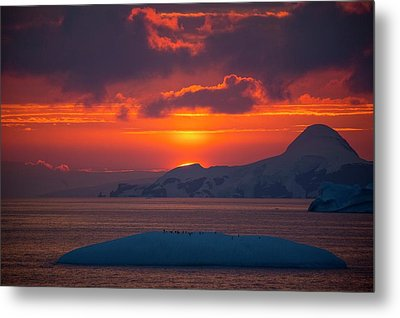 Sunset At 11pm In Antarctica Metal Print by Peter Menzel