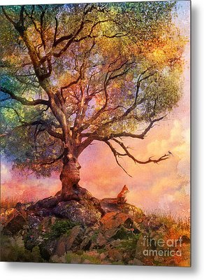 Sunset At Fox Mountain Metal Print by Aimee Stewart