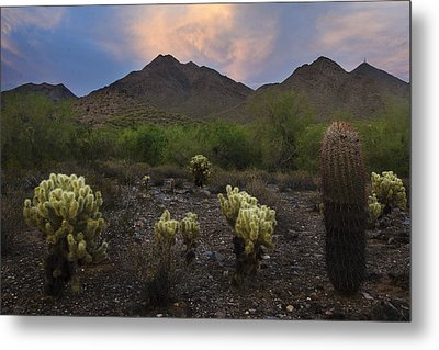 Sunset At Mcdowell Mountains In Scottsdale Az Usa Metal Print