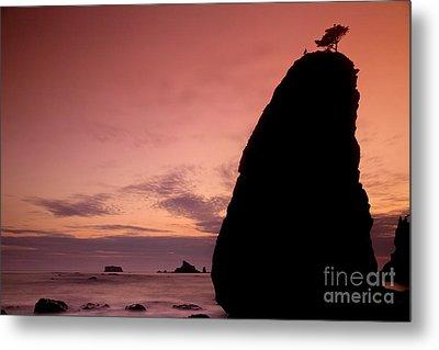 Sunset At Rialto Beach Metal Print by Keith Kapple