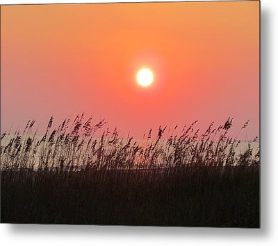 Metal Print featuring the photograph Sunset At The Beach by Cynthia Guinn
