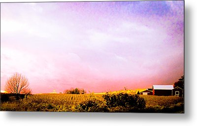 Sunset At The Farm Metal Print by Sara Frank