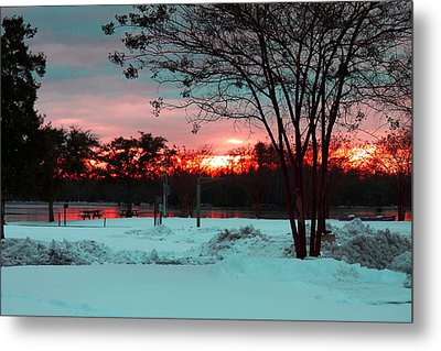 Sunset At The Park Metal Print by Carolyn Ricks