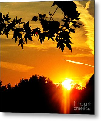 sunset AUSTIN Metal Print by Tina M Wenger