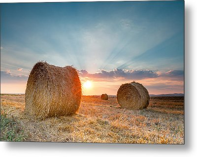 Sunset Bales Metal Print by Evgeni Dinev
