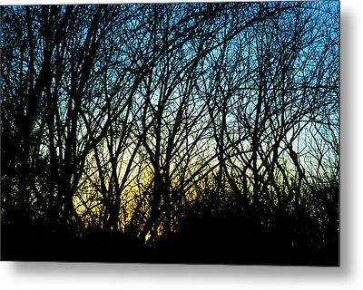 Sunset Behind Trees Metal Print