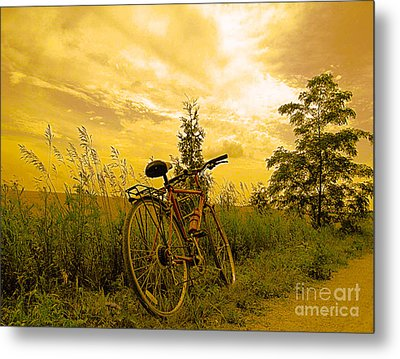 Sunset Biking Metal Print
