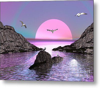 Sunset Birds In Flight Metal Print by Jacqueline Lloyd