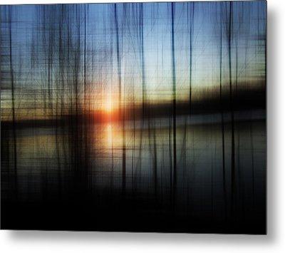 Sunset Blur Metal Print by Florin Birjoveanu