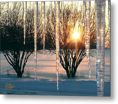 Metal Print featuring the photograph Sunset 'cicles by Doug Kreuger