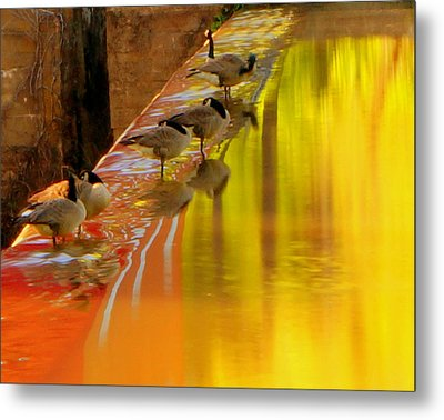 Metal Print featuring the photograph Sunset Club by Chris Fraser