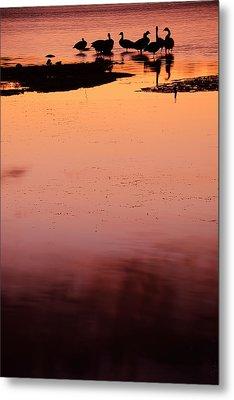 Sunset Discourse- Gorton Pond Warwick Rhode Island Metal Print