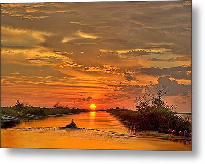 Sunset Everglades Metal Print by Bob Mulligan
