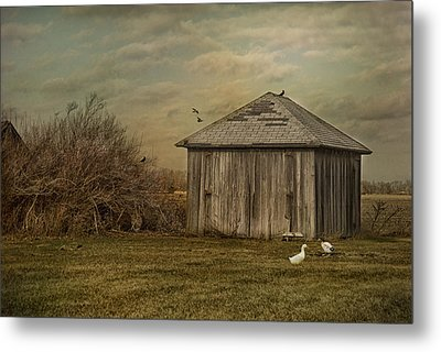 Sunset Farm Metal Print by Mary Timman
