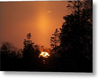 Sunset Flare Metal Print by Greg Vizzi