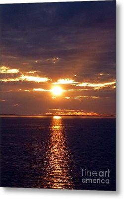Sunset From Peace River Bridge Metal Print by Barbie Corbett-Newmin