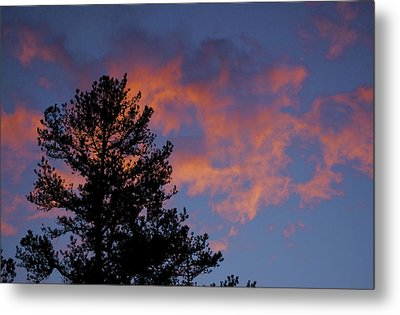 Sunset Glow Metal Print by Greg Vizzi