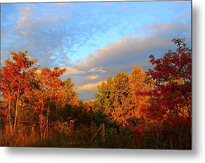Metal Print featuring the photograph Sunset Glow by Kathryn Meyer