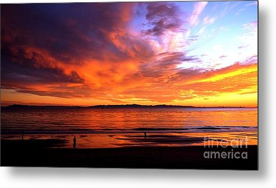 Metal Print featuring the photograph Sunset Glow by Sue Halstenberg