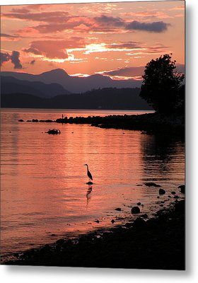 Sunset Heron Metal Print