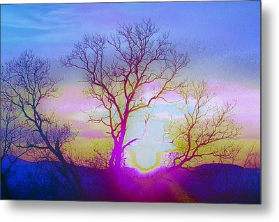 sunset I Metal Print by Shirley Moravec