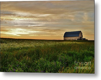 Sunset In Aroostook County Metal Print by Christopher Mace