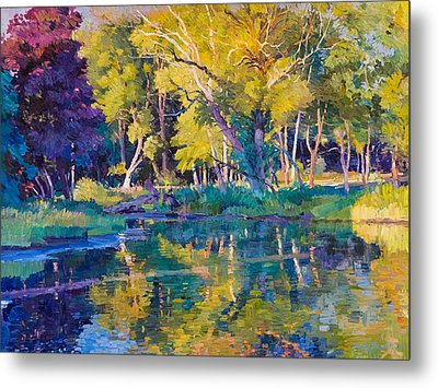 Sunset In Hinsdale Park Metal Print